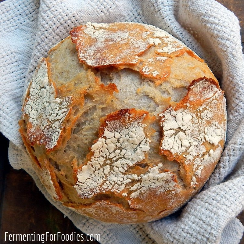 Pain de Compagne Traditional French sourdough bread