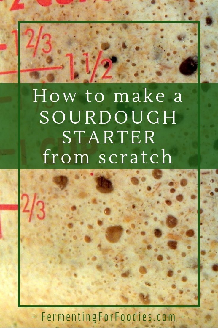 Everything you need to know about how to make a sourdough starter from scratch
