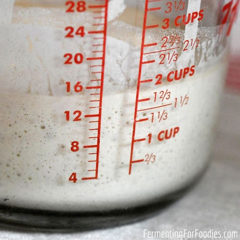 The simple way to make sourdough starter from scratch.