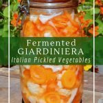 Giardiniera is perfect for picnics, barbecues and served with a cheese plate