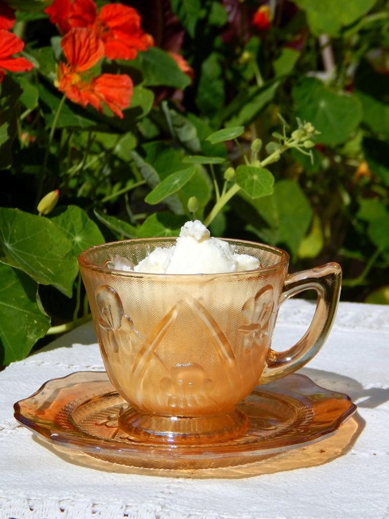 Tea cup of ice cream.