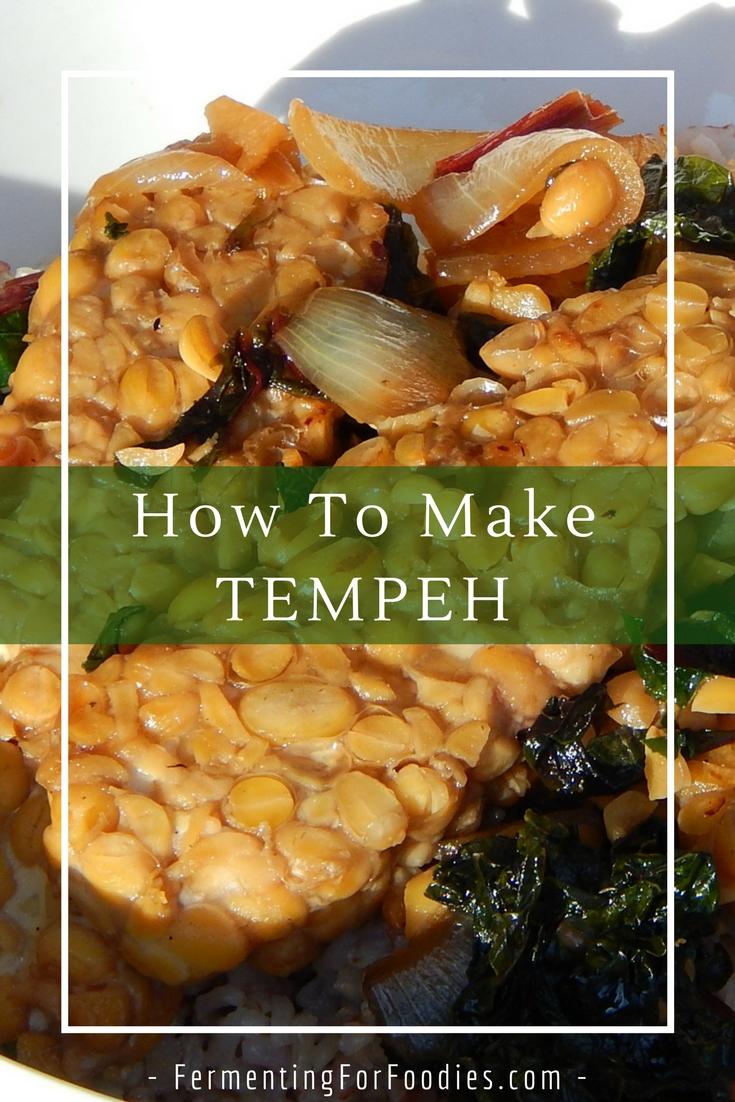 Make soybean tempeh at home! DIY Vegan Gluten Free