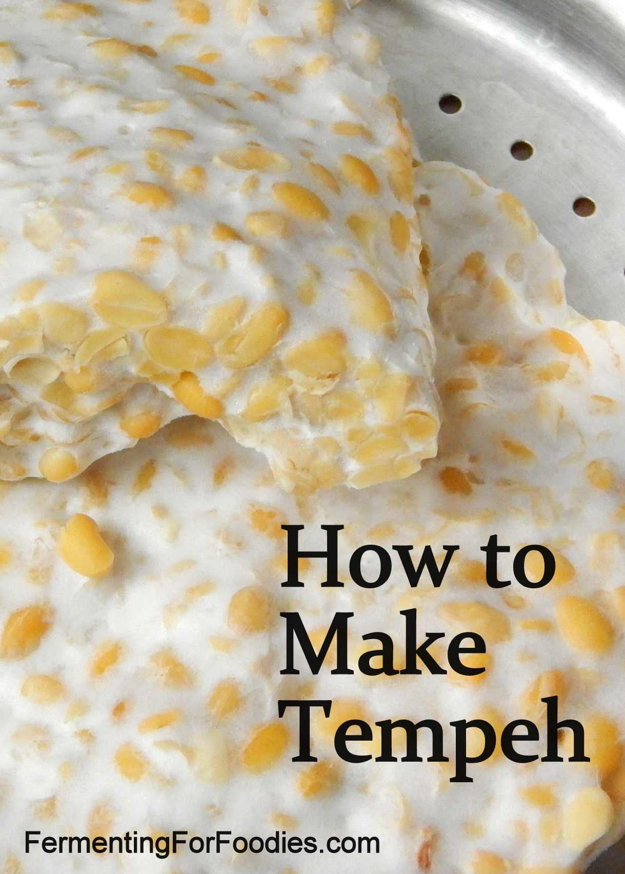 Homemade Tempeh Steamed