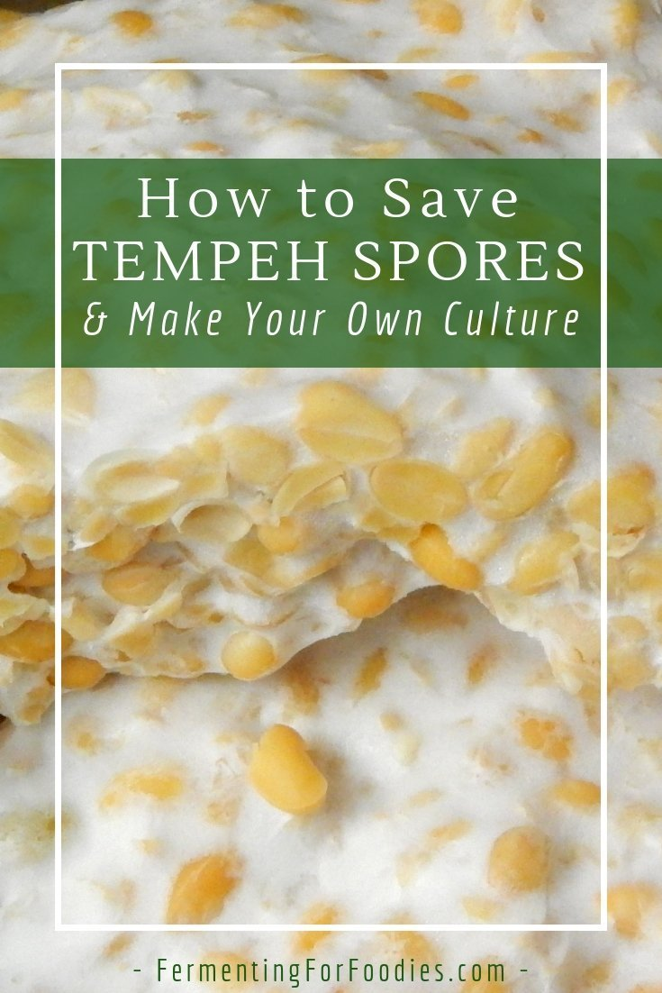 How to save tempeh culture for future batches of tempeh