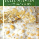 How to make tempeh using mould spores to break down the proteins and bind them