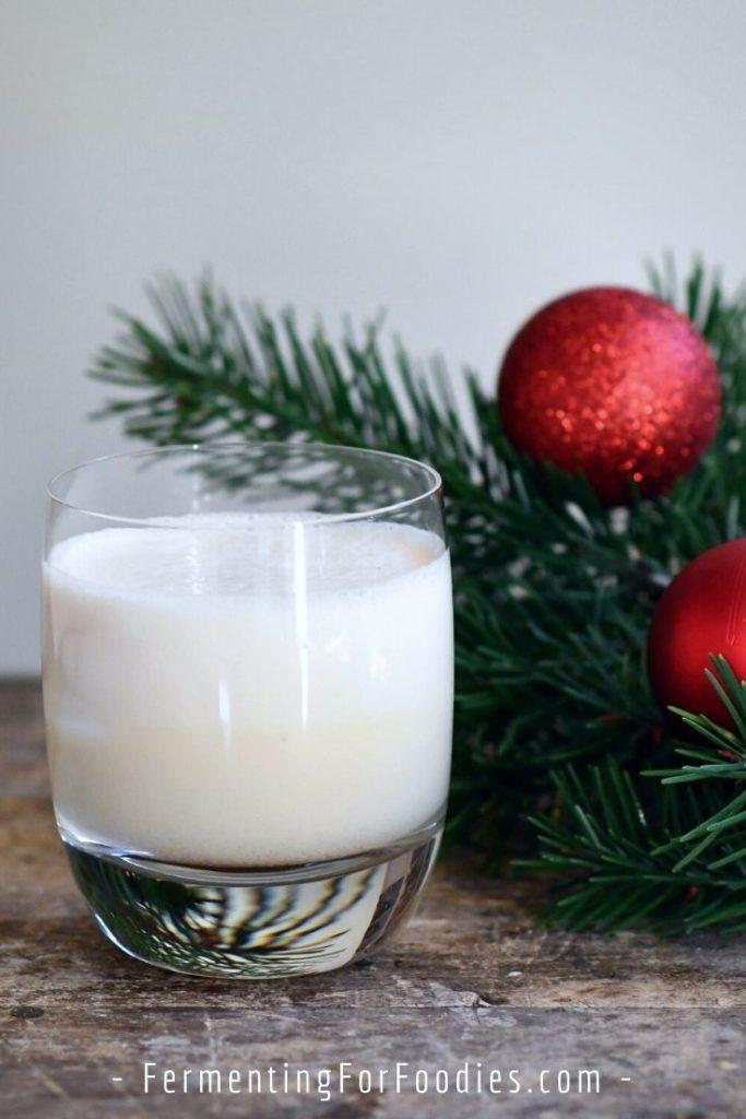 Milk kefir eggnog for a probiotic holiday treat!