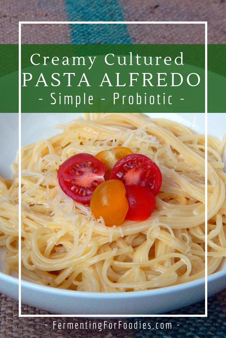 Simple probiotic pasta alfredo is a quick and delicious meal.
