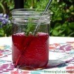 Probiotic fermented salty beet kvass - a borscht flavour drink