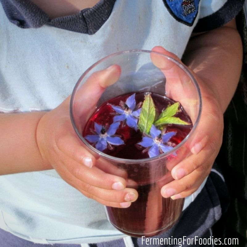 25 Kid-friendly fermented and probiotic recipes - delicious and fun