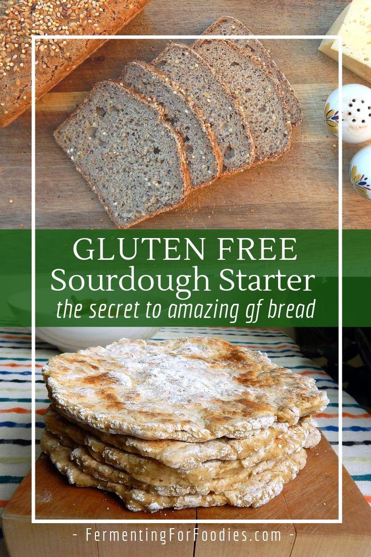 How to make a gluten free sourdough starter from scratch
