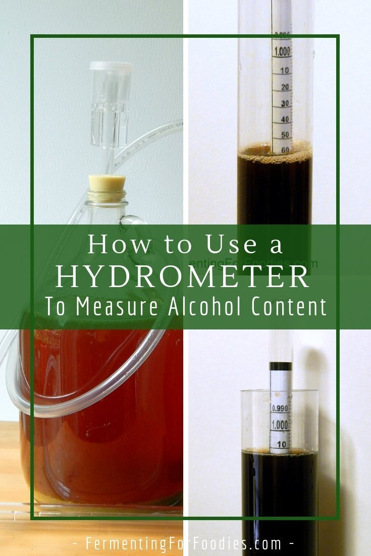How to use a hydrometer for homebrewing and homemade wine