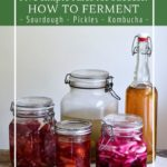 Simple rules for fermenting foods