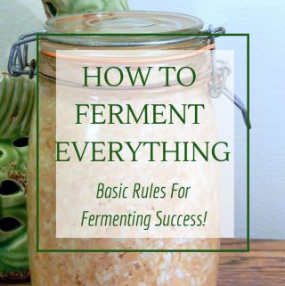 Basic rules for fermenting everything. Vegetables, sourdough, yogurt, kombucha
