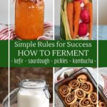 How to ferment everything from kombucha to sourdough