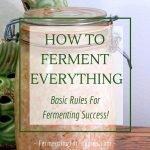 Basic rules for fermenting everything. Vegetables, sourdough, yogurt, kombucha