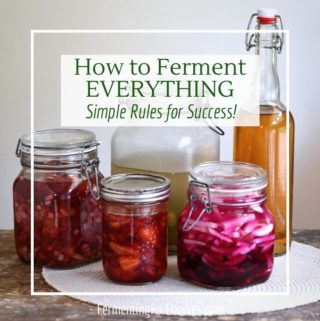 What do you need to know to ferment everything