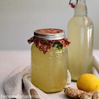 Learn about the difference between homemade ginger beer and ginger ale.