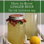 How to brew an old-fashioned homemade ginger beer with probiotic ginger bug.