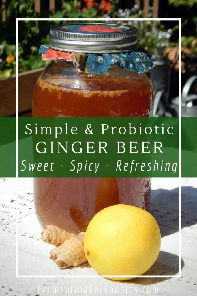 Homemade ginger beer is the easiest homemade soda pop, can be made without any special ingredients