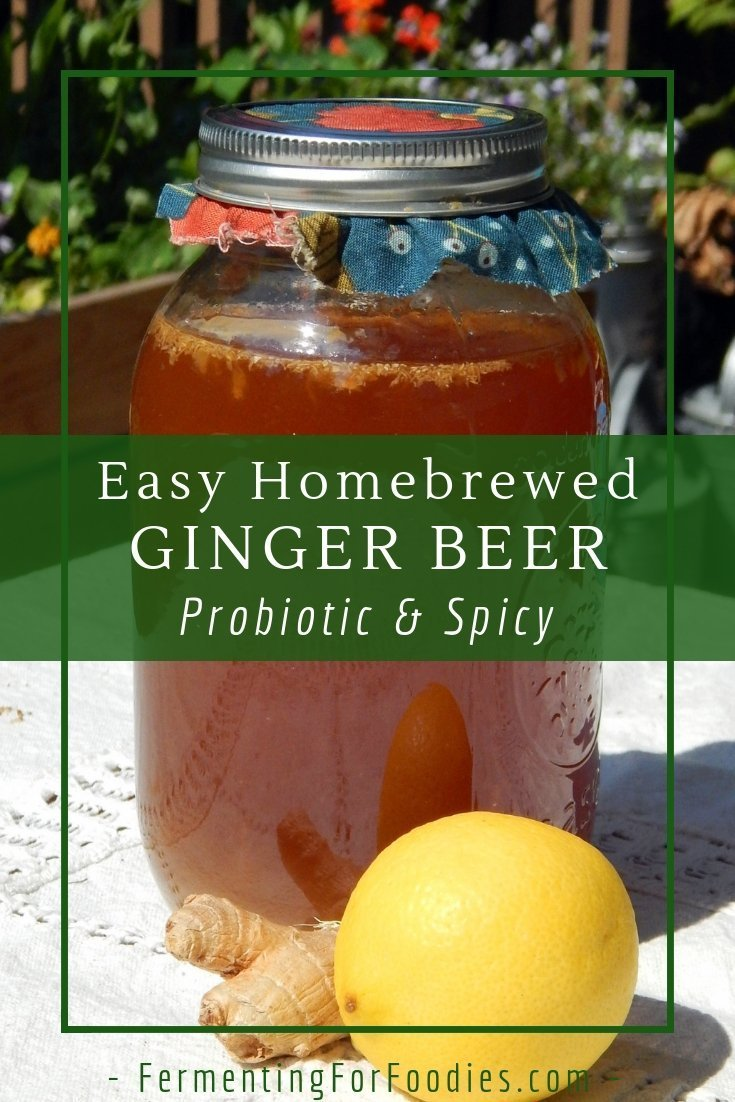 Homemade ginger beer is an easy fermented beverage with a traditional flavour.