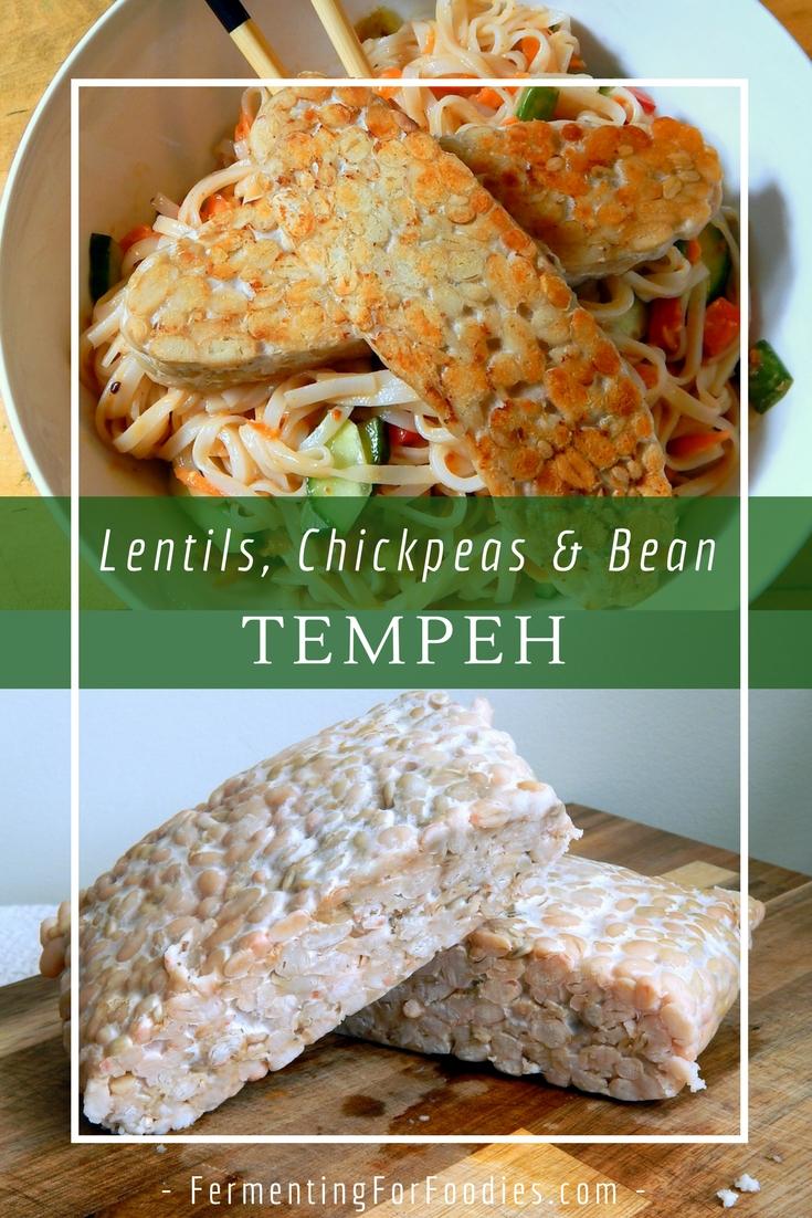 How to make bean tempeh at home. Gluten free, vegan