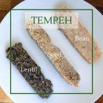 Lentil tempeh, chickpea tempeh and bean tempeh