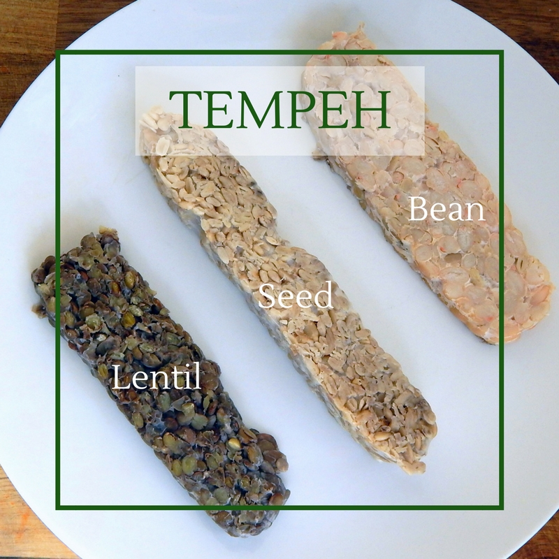Lentil tempeh, chickpea tempeh and bean tempeh