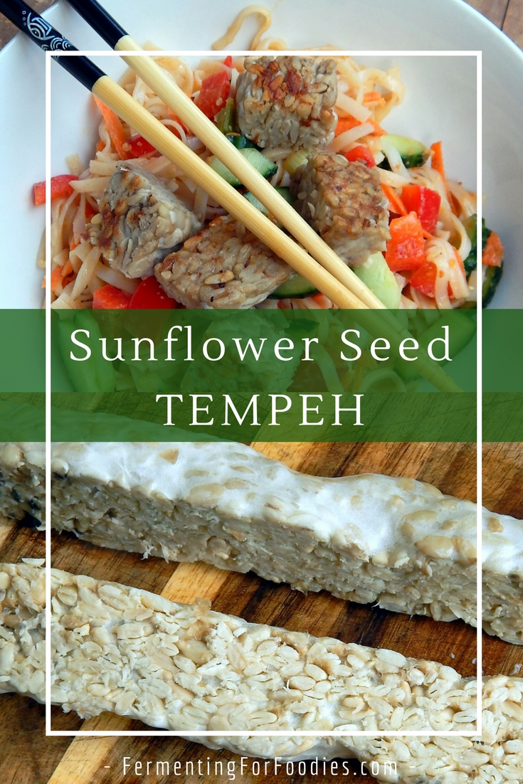 DIY sunflower seed tempeh, soy-free and delicious