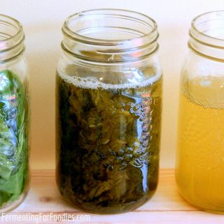 Herbal Elixirs for kombucha, water kefir, jun and soda stream