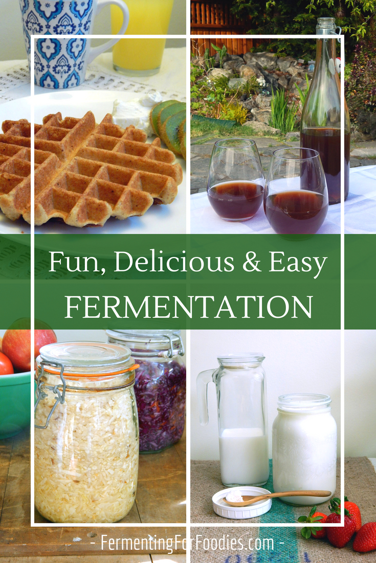 Every day fermentation for health, probiotics and tradition