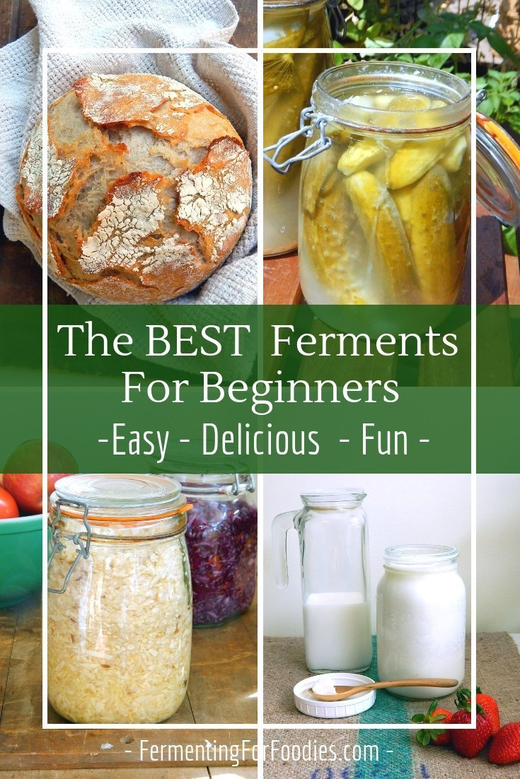 Lots of fermenting recipes for beginners -where to start for success