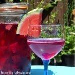 Honey fermented sweet beet kvass is a refreshing sparkling beverage
