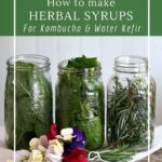 Simple herbal infusions for flavoring beverages