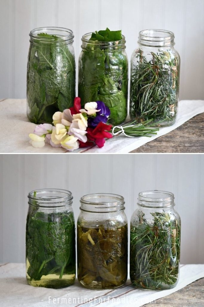 How to use herb infusions to flavor kombucha and water kefir