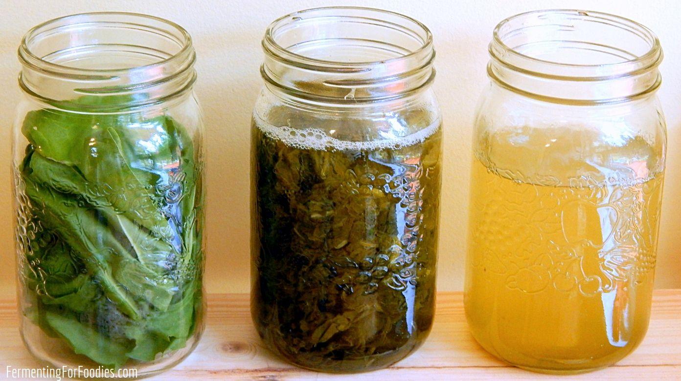 Herbal Elixirs for kombucha, water kefir, jun and soda stream
