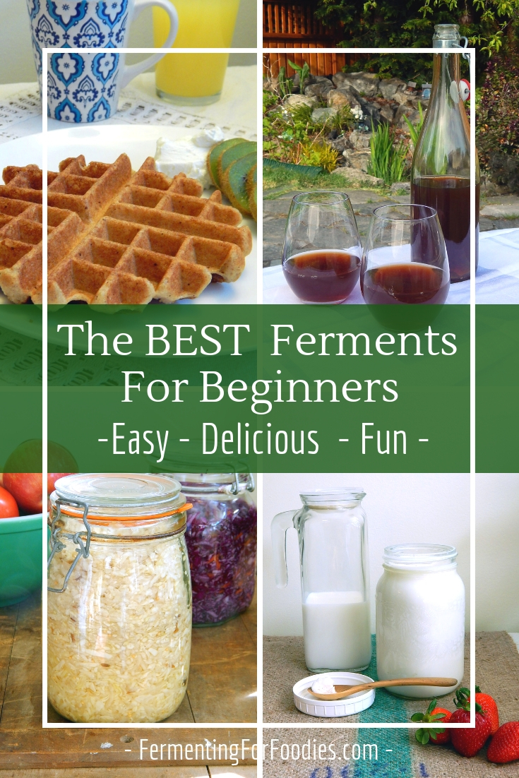 Here are some of the best ferments for beginners because they are easy, delicious and fun.
