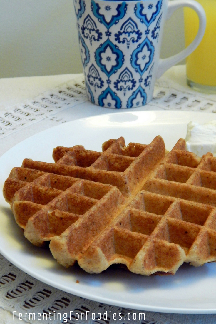 Fermented vegan waffle - gluten free and delicious