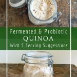 Fermenting quinoa improves the nutritional value by breaking down complex carbs and increasing the availability of protein.