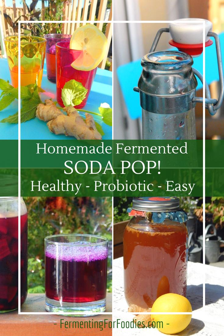 DIY soda pop - Healthy, low sugar, probiotic