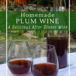 Rich and smooth homemade plum wine.
