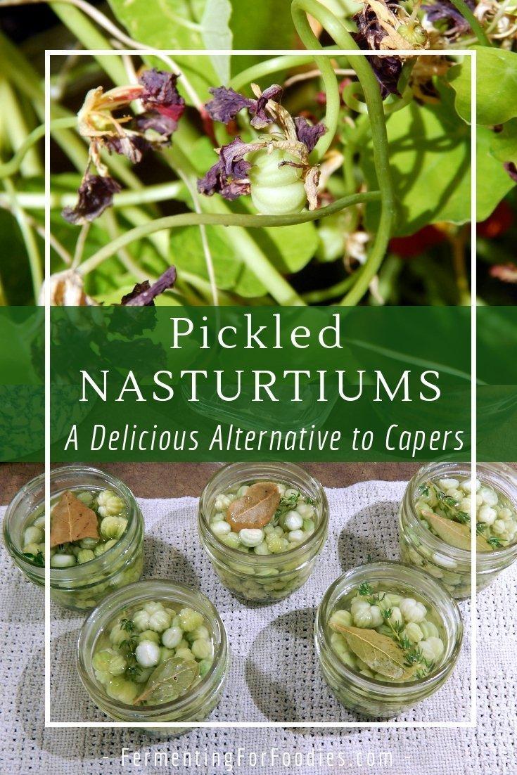 How to make pickled nasturtium seeds