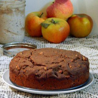 Sugar free, gluten free, vegan healthy apple cake.