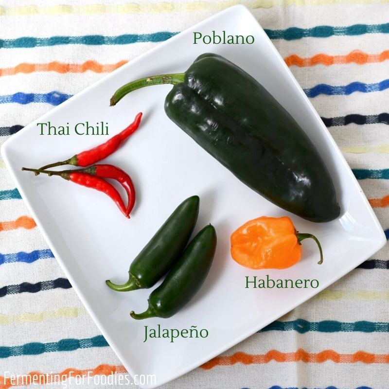 How to make fermented hot sauce - simple, no-cook & zero-waste