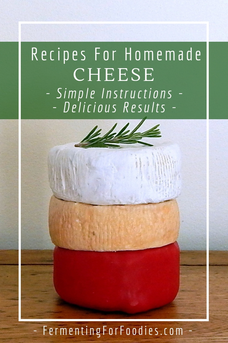 Washed rind cheese recipe