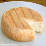 Homemade cheese recipes - simple instructions - delicious results