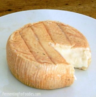 12 homemade cheese recipes - how to make cheese from milk without rennet