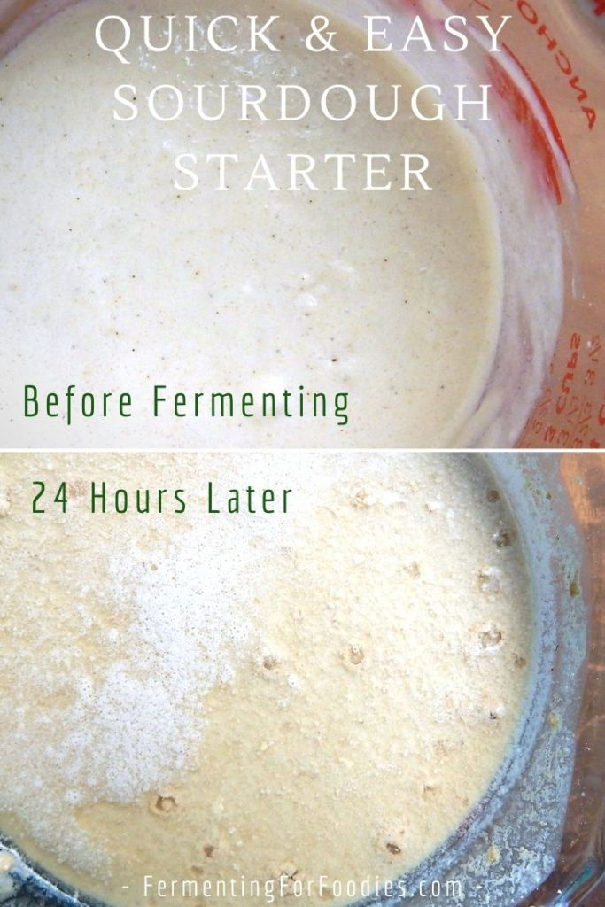 There are many reasons why peope struggle to keep a healthy sourdough starter, particularly when the air quality is bad