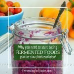 Learn about the health benefits of fermented foods and beverages