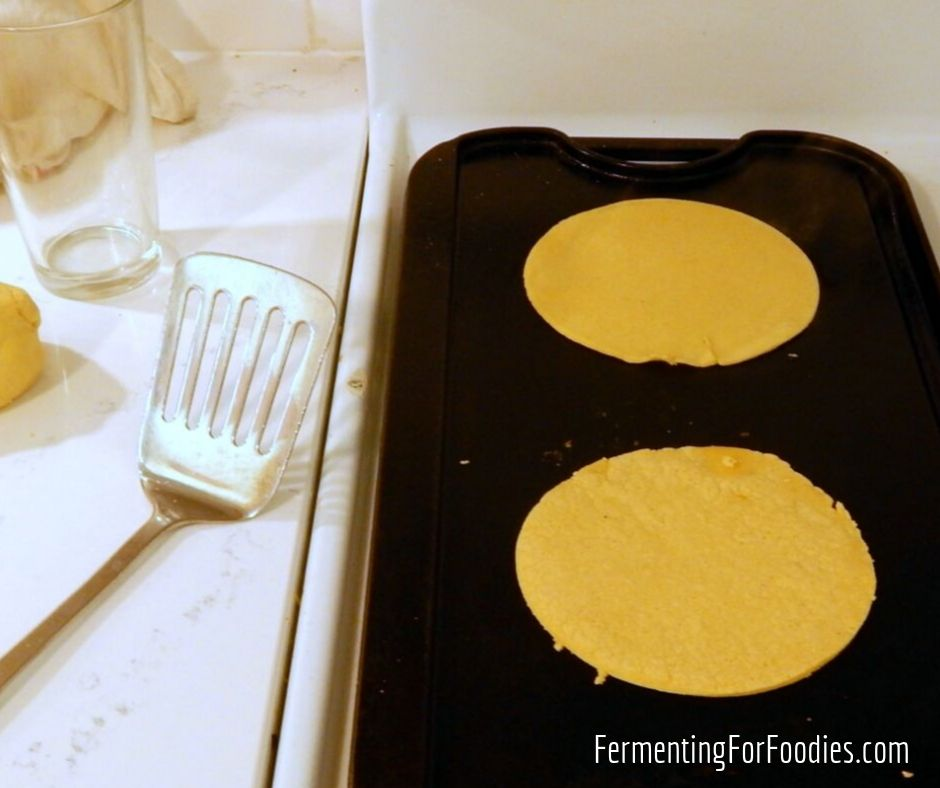 Fermented Corn Tortillas Easy And Delicious Fermenting For Foodies