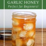 How to make honey fermented garlic for an immune boosting and probiotic boost.